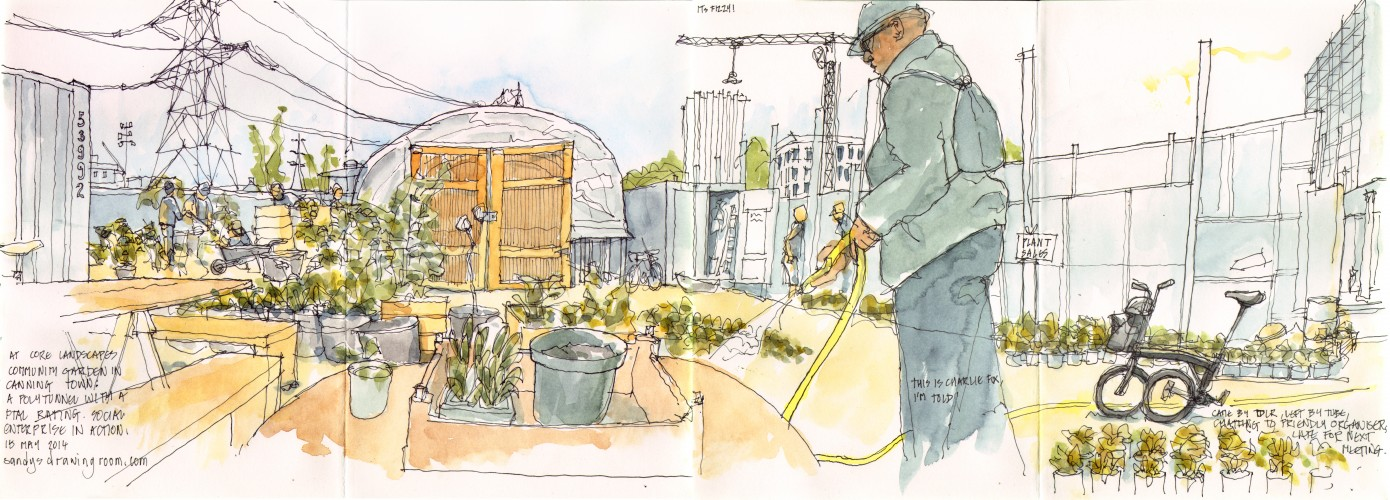 community garden 15  May 2014